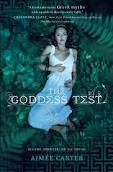 Book Cover Image: The Goddess Test