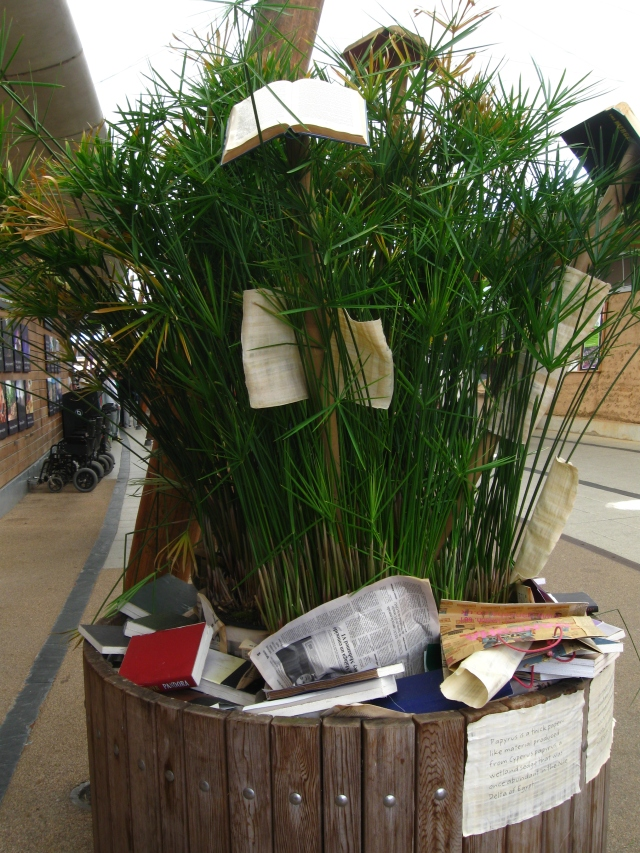 Papyrus Tree with books